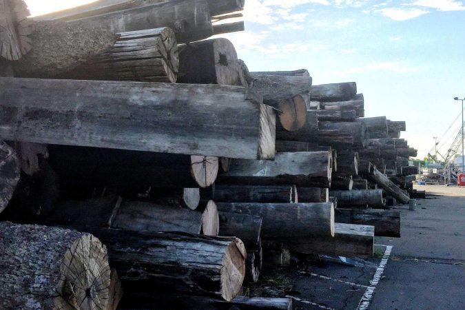 Timberyard worker
